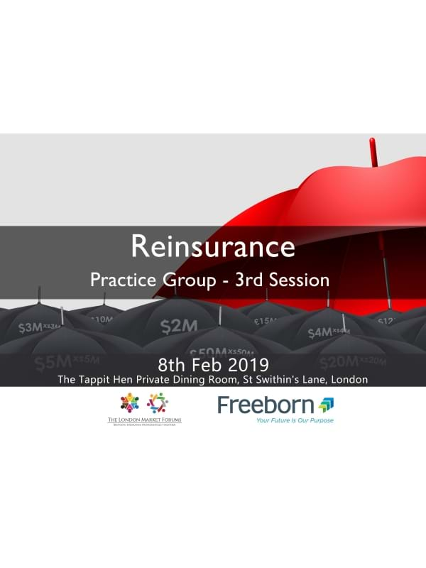 Reinsurance Leaders Practice Group
